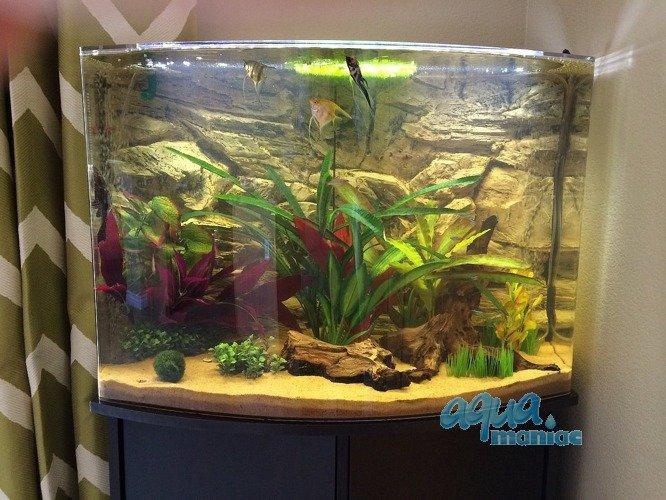 Aquarium background for juwel aquarium trigon 190 3d for Aquarium corner decoration
