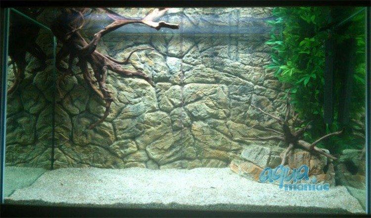 aquarium background for juwel aquarium vision 260 3d thin. Black Bedroom Furniture Sets. Home Design Ideas