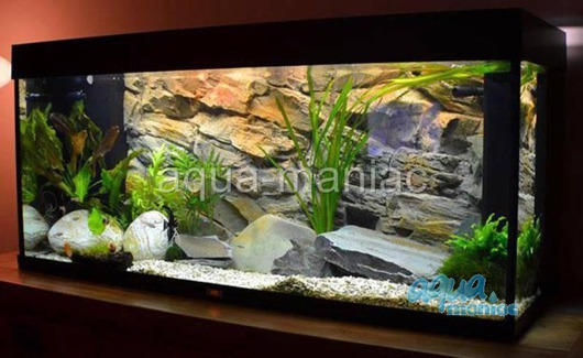 3D beige rock background 97x45cm