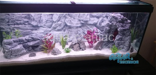 Bundle of 5 grey aquarium rock SAVE  £15