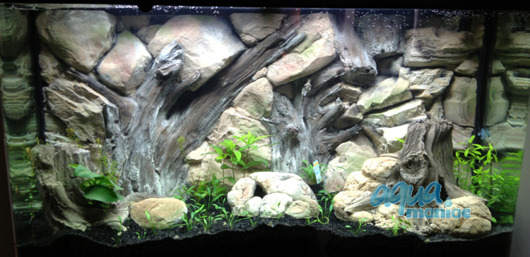 JUWEL RIO 240 3D Root background 117x45cm in 2 sections