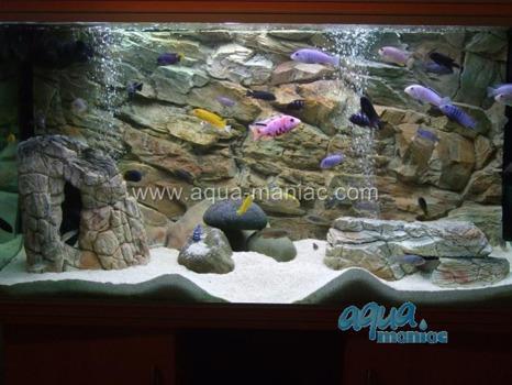 Long beige aquarium rock