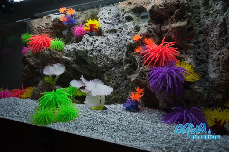 Modules of Limestone Background with corals to fit 100x40cm aquarium