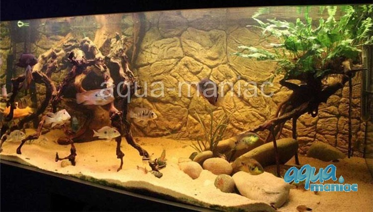 3D Thin Rock Background 239x56cm in 4 section to fit 8 foot by 2 foot tanks