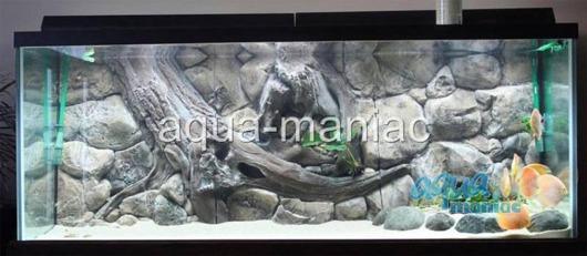3D amazon background 146x45cm