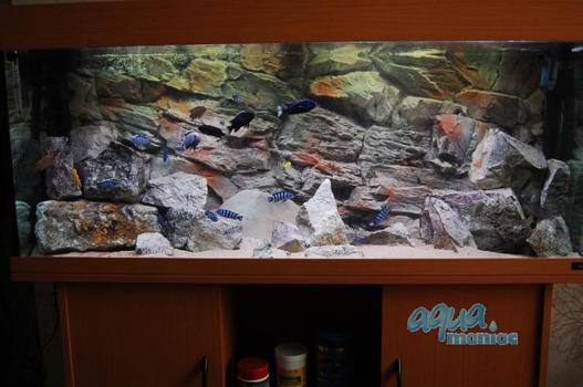 3D beige rock background 146x45cm