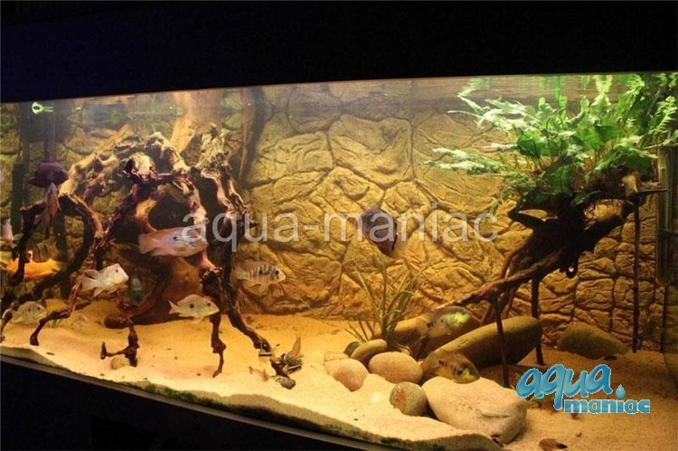 Fluval Roma 200 thin rock background 97x45cm 2 sections