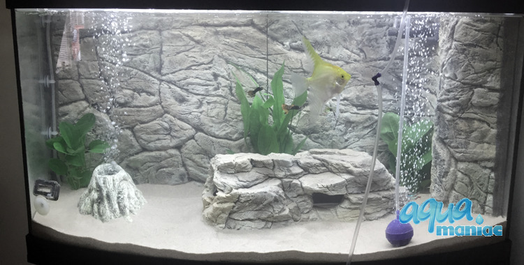 Fluval Vicenza 260 thin grey rock background 117x52 cm 2 sections