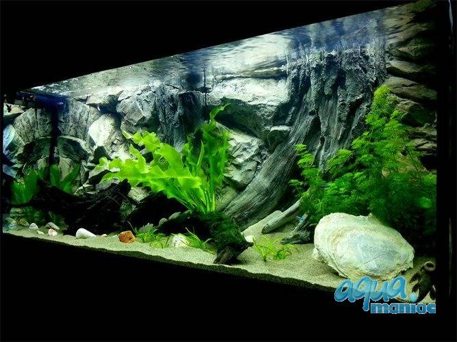 JUWEL Vision 180 3D Root Background 90x45cm in 2 sections