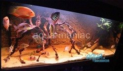 3D thin rock background 196x54cm